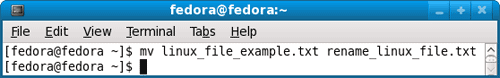 Rename Linux file example