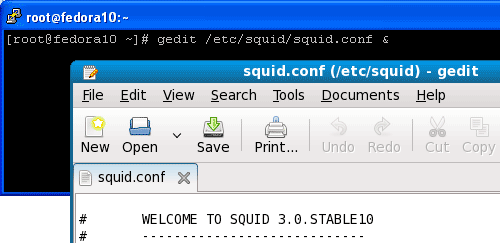 Use gedit, the graphical text editor to edit squid configuration file on Gnome desktop.